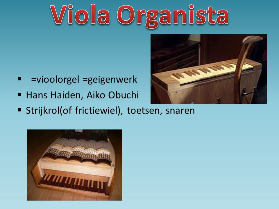 • Houten planken • Stokken met houten plank • Onhandig
