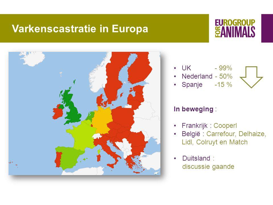 Varkenscastratie in Europa •UK - 99% •Nederland - 50% •Spanje -15 % In beweging : •Frankrijk : Cooperl •België : Carrefour, Delhaize, Lidl, Colruyt en Match •Duitsland : discussie gaande
