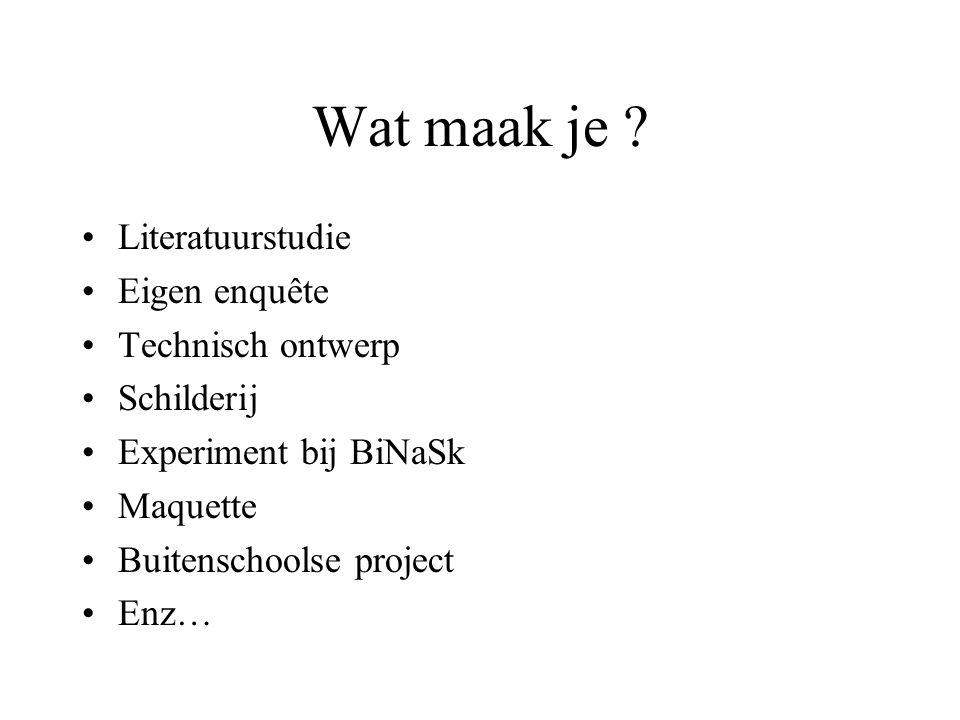 Wat maak je ? •Literatuurstudie •Eigen enquête •Technisch ontwerp •Schilderij •Experiment bij BiNaSk •Maquette •Buitenschoolse project •Enz…