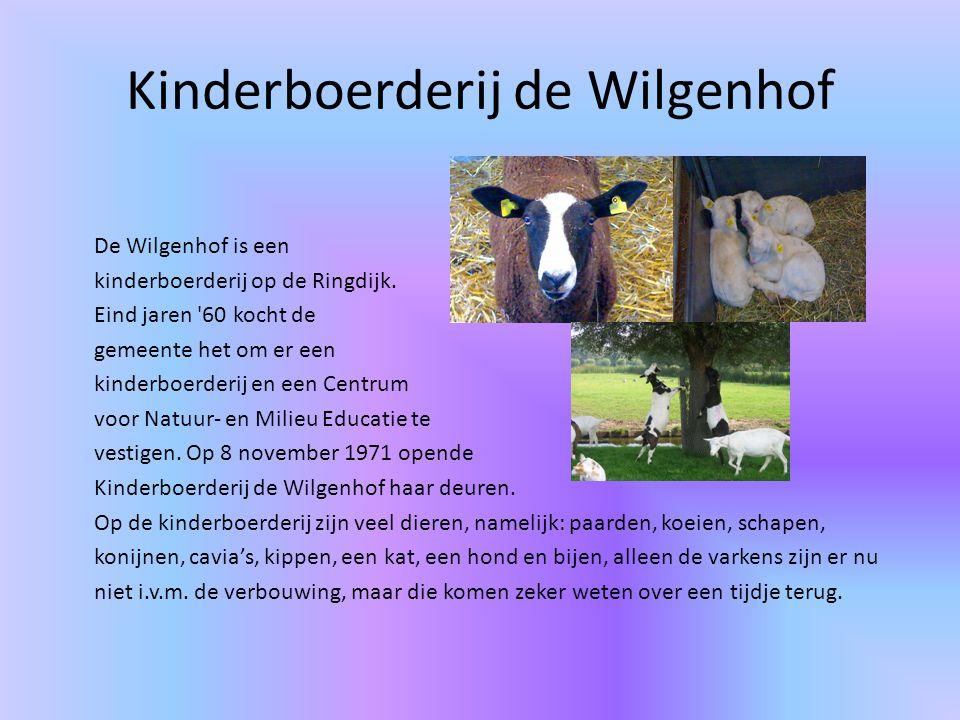 Kinderboerderij de Wilgenhof De Wilgenhof is een kinderboerderij op de Ringdijk.