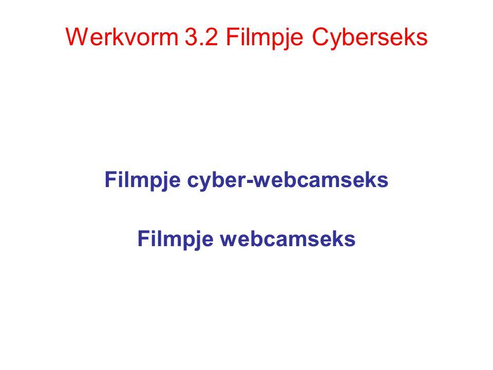 Werkvorm 3.2 Filmpje Cyberseks Filmpje cyber-webcamseks Filmpje webcamseks