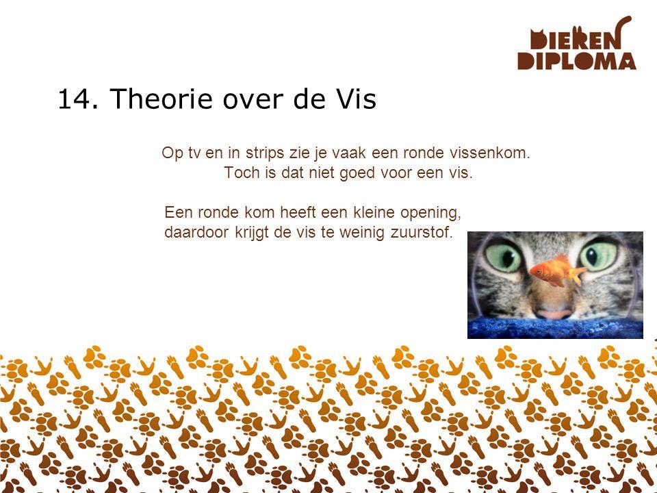 13. Theorie over de Kat Katten zijn schone dieren. Ze plassen en poepen netjes in de kattenbak. Maar niet als de bak vies is. Maak de bak schoon met h