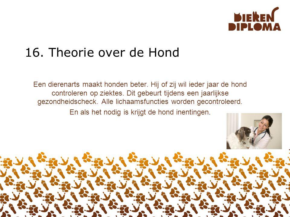 15. PRAKTIJK over de Hond Interview een baasje van een hond over de verzorging. Maak er een leuk verslag of filmpje van. Tip: Maak foto ' s en/of film