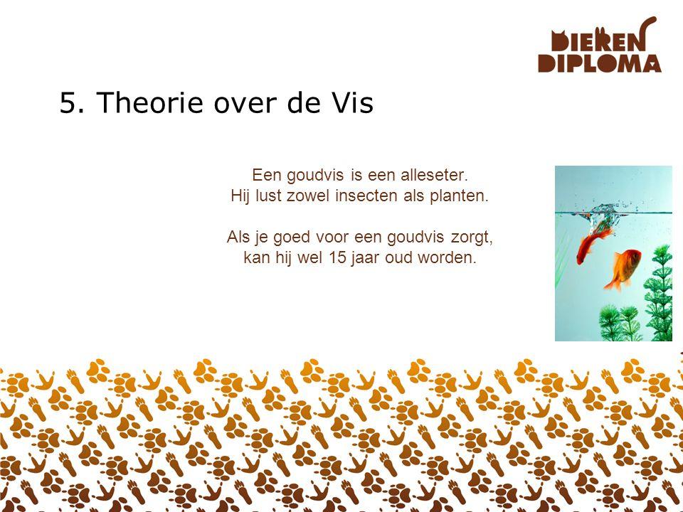 4. Theorie over de Vogel Vogels worden soms buiten in een grote kooi gehouden. Zo'n kooi heet een volière (spreek uit: vojeiruh). Sommige vogels klaut