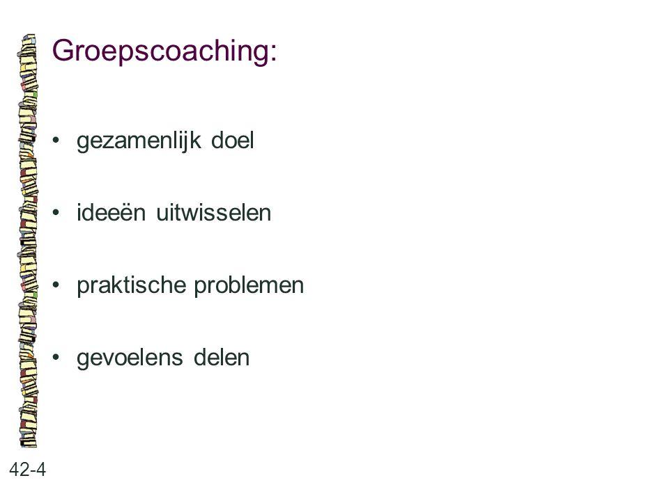 Groepscoaching: 42-4 gezamenlijk doel ideeën uitwisselen praktische problemen gevoelens delen