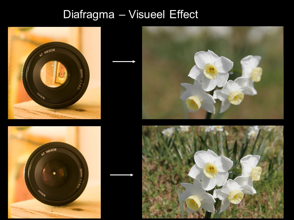 Diafragma – Visueel Effect