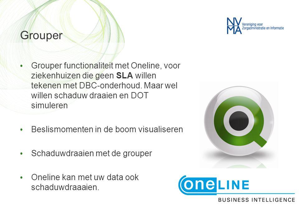 Grouper • Grouper functionaliteit met Oneline, voor ziekenhuizen die geen SLA willen tekenen met DBC-onderhoud. Maar wel willen schaduw draaien en DOT