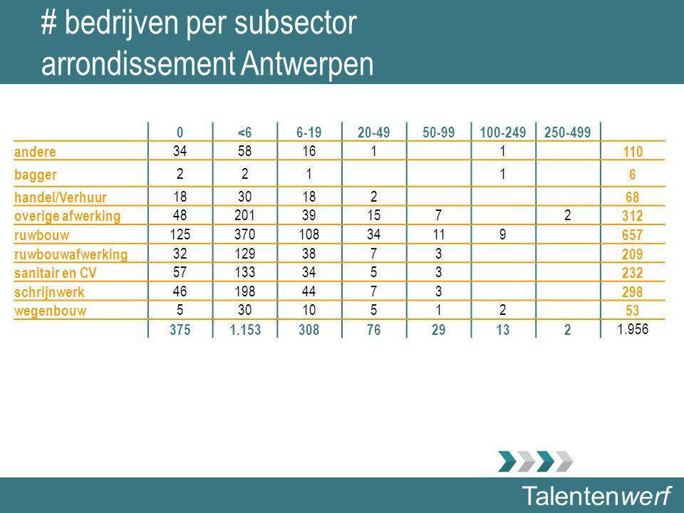 Talentenwerf # bedrijven per subsector arrondissement Antwerpen 0<66-1920-4950-99100-249250-499 andere 34581611 110 bagger 2211 6 handel/Verhuur 18301