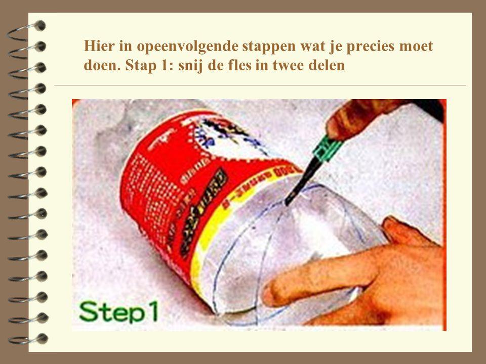 Stap 2: verwarm het water en laat er de suiker in smelten.