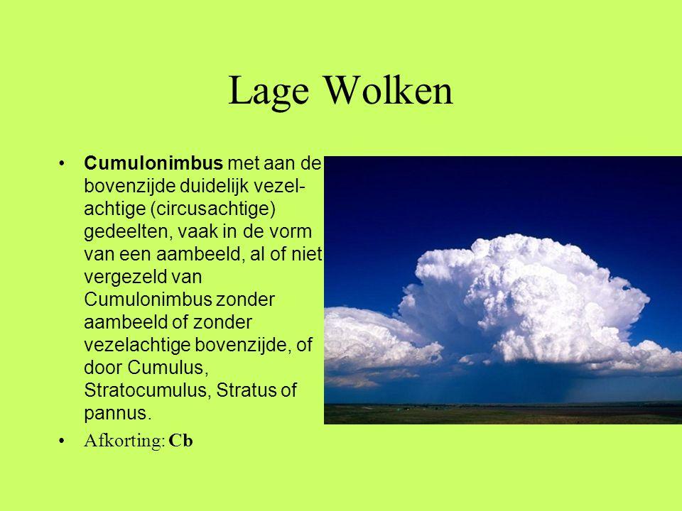 Lage Wolken •Cumulonimbus met aan de bovenzijde duidelijk vezel- achtige (circusachtige) gedeelten, vaak in de vorm van een aambeeld, al of niet verge