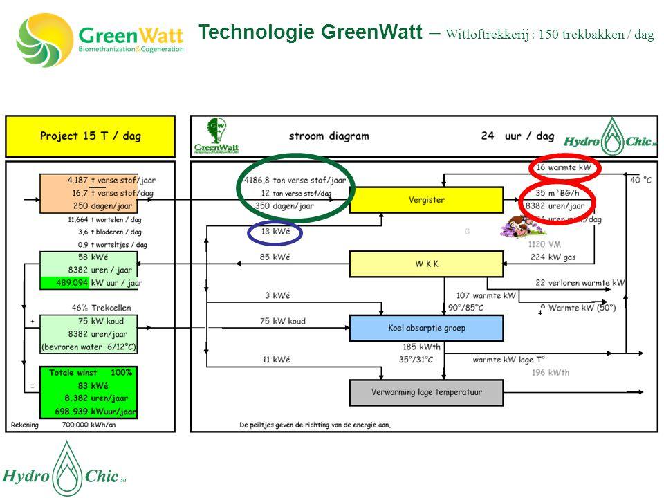4 Technologie GreenWatt – Witloftrekkerij : 150 trekbakken / dag