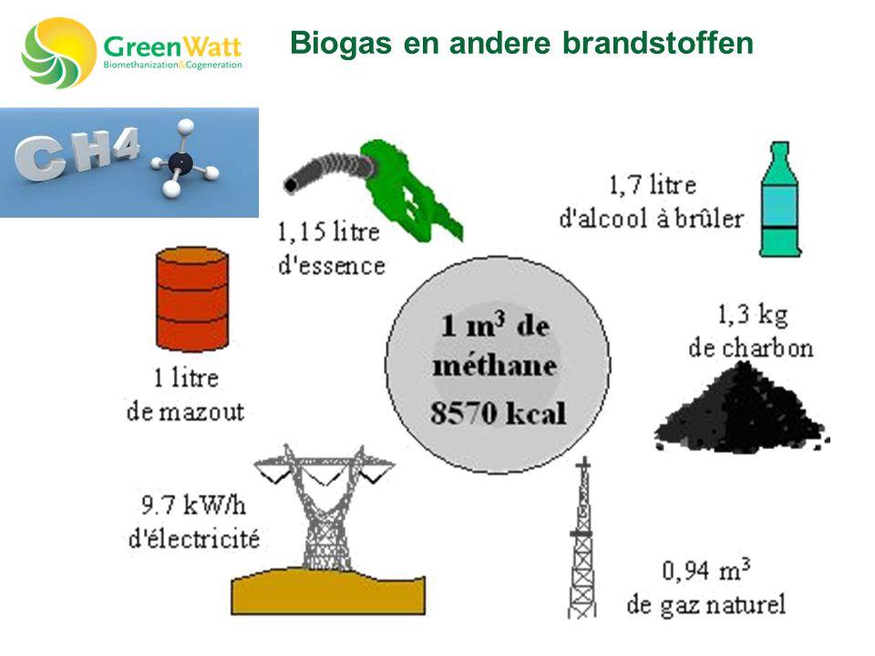 Biogas en andere brandstoffen