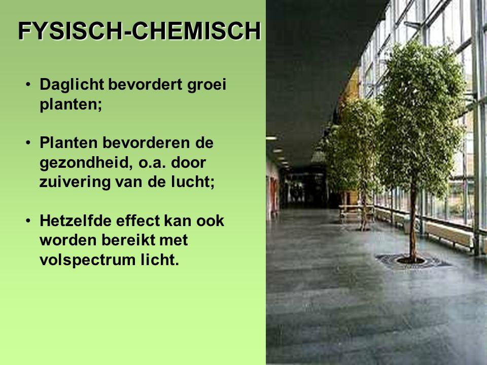 11 FYSISCH-CHEMISCH •Daglicht bevordert groei planten; •Planten bevorderen de gezondheid, o.a.