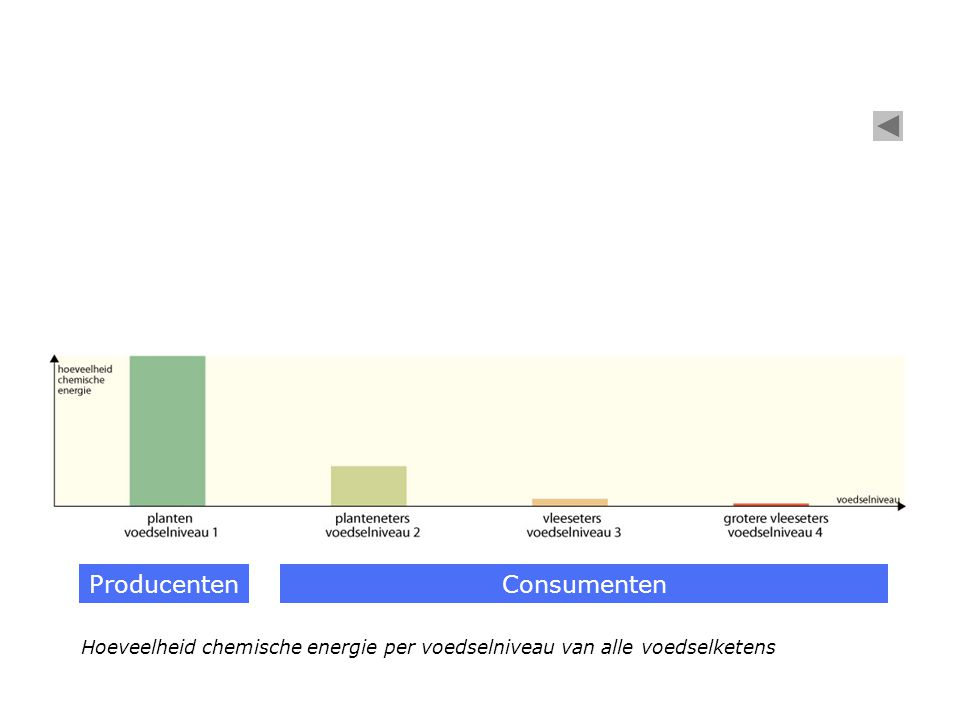 Hoeveelheid chemische energie per voedselniveau van alle voedselketens ProducentenConsumenten