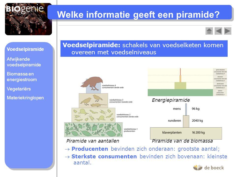 Welke informatie geeft een piramide? Voedselpiramide: schakels van voedselketen komen overeen met voedselniveaus  Producenten bevinden zich onderaan: