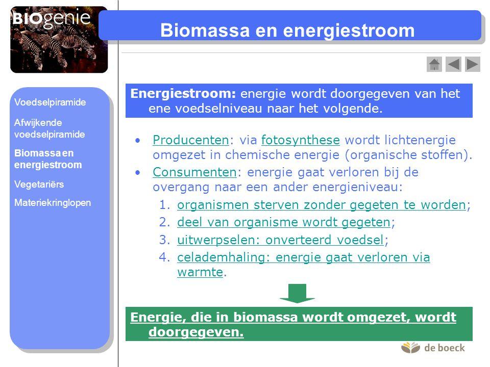 Biomassa en energiestroom Energiestroom: energie wordt doorgegeven van het ene voedselniveau naar het volgende. •Producenten: via fotosynthese wordt l