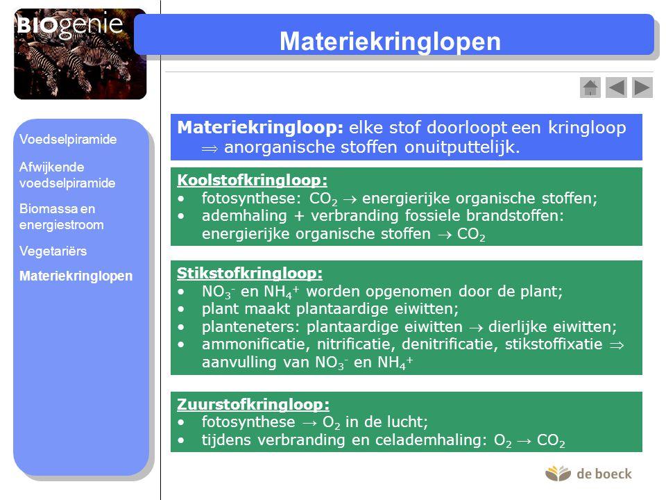 Materiekringloop: elke stof doorloopt een kringloop  anorganische stoffen onuitputtelijk. Koolstofkringloop: •fotosynthese: CO 2  energierijke organ