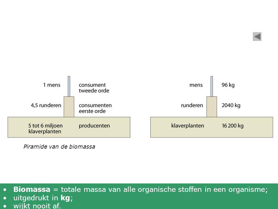 Piramide van de biomassa •Biomassa = totale massa van alle organische stoffen in een organisme; •uitgedrukt in kg; •wijkt nooit af.