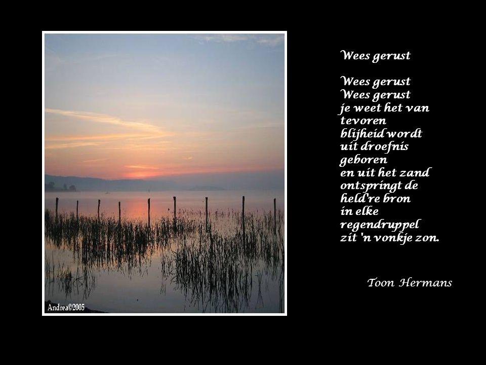 Wees gerust je weet het van tevoren blijheid wordt uit droefnis geboren en uit het zand ontspringt de held re bron in elke regendruppel zit n vonkje zon.