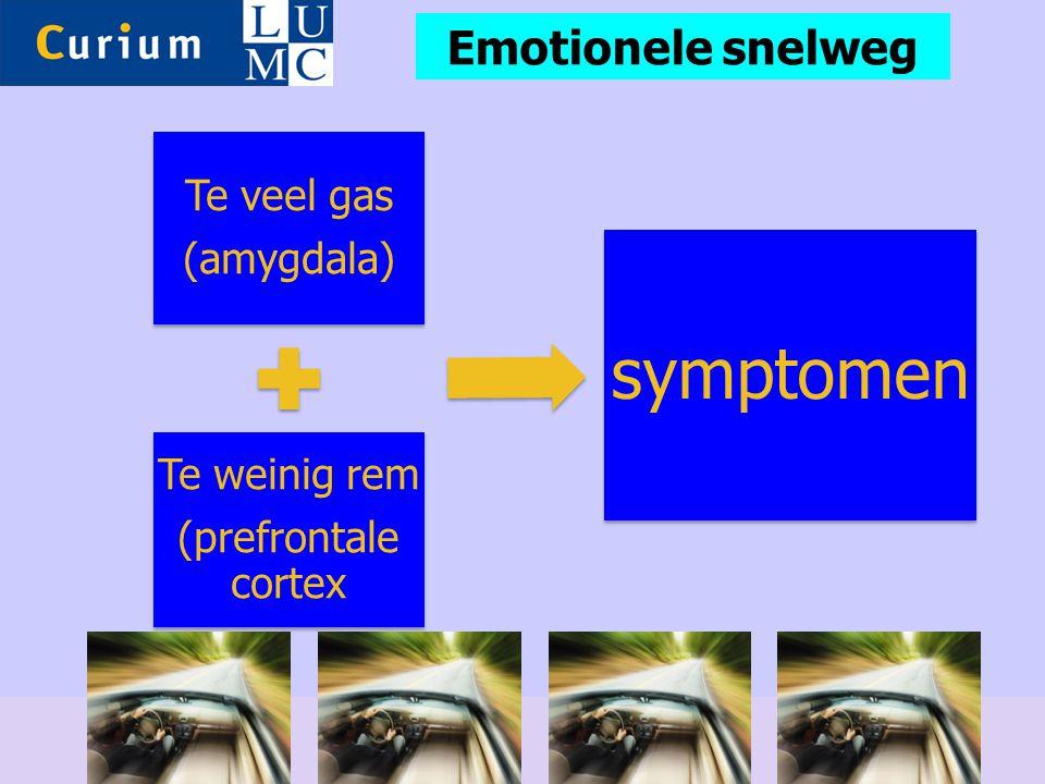 Te veel gas (amygdala) Te weinig rem (prefrontale cortex symptomen Emotionele snelweg