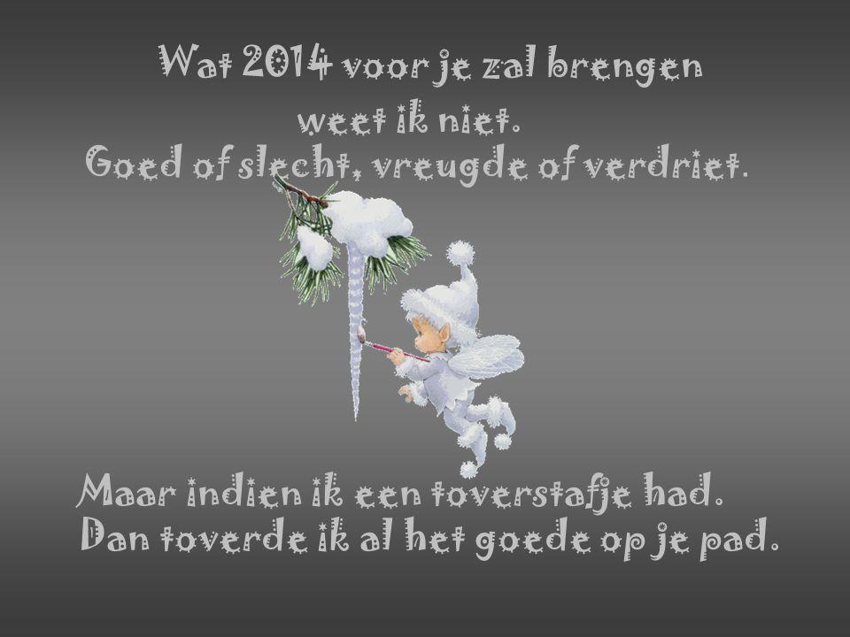 Wat 2014 voor je zal brengen weet ik niet.Goed of slecht, vreugde of verdriet.