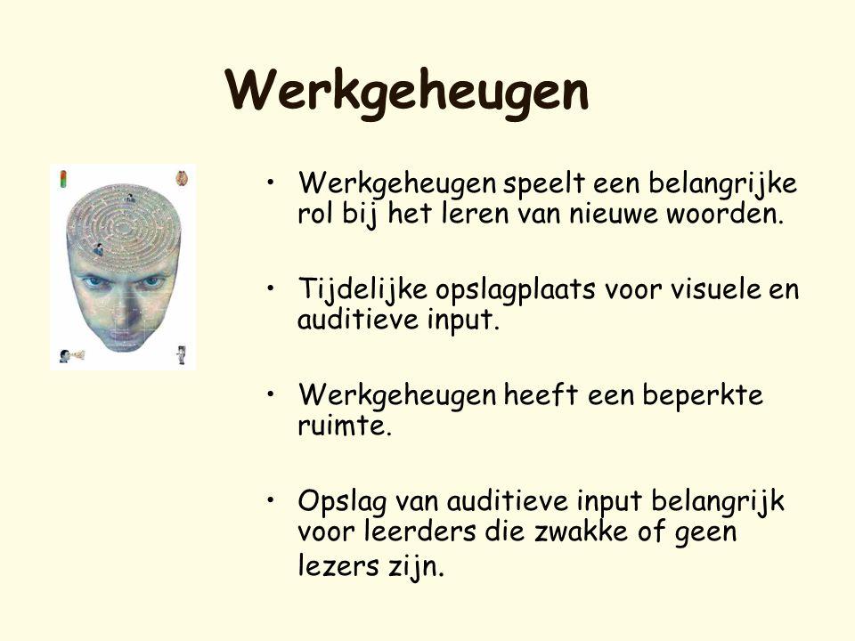 Werkgeheugen •Werkgeheugen speelt een belangrijke rol bij het leren van nieuwe woorden. •Tijdelijke opslagplaats voor visuele en auditieve input. •Wer