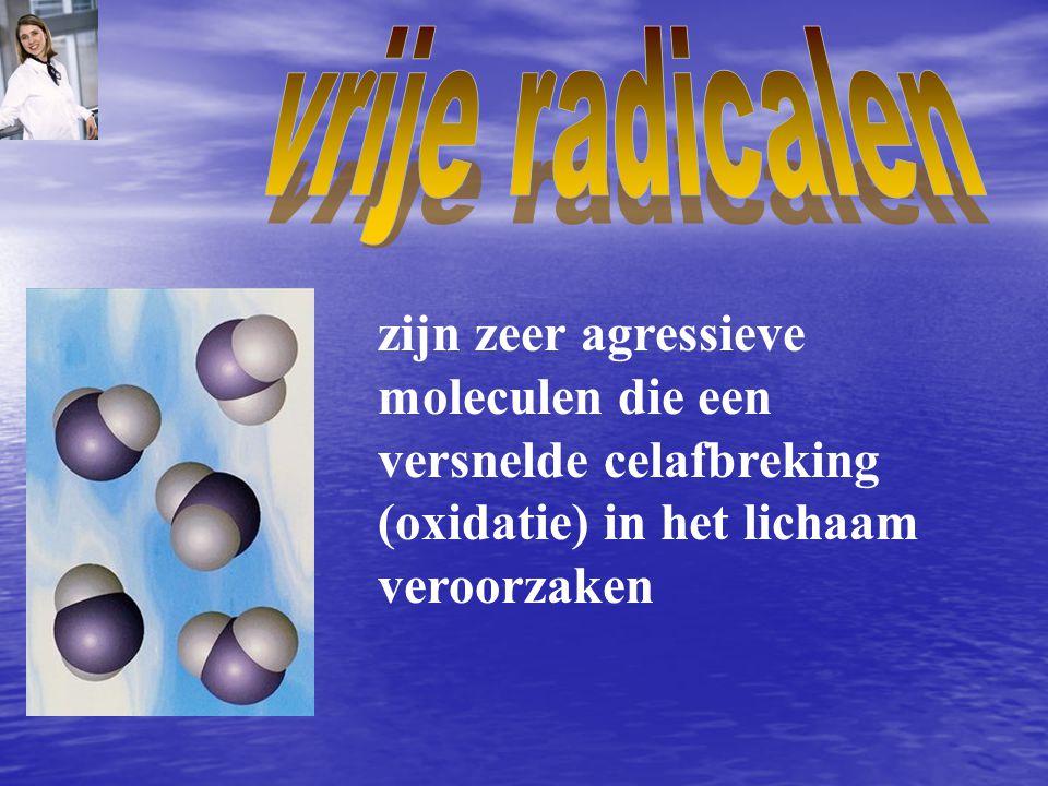 zijn zeer agressieve moleculen die een versnelde celafbreking (oxidatie) in het lichaam veroorzaken