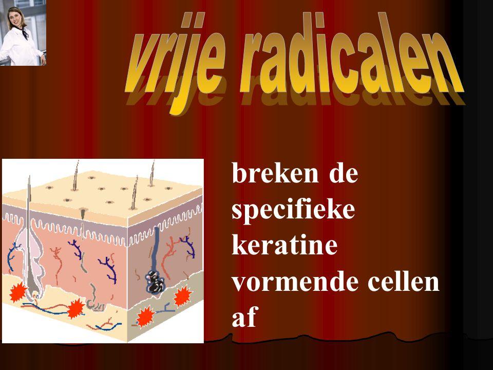 breken de specifieke keratine vormende cellen af