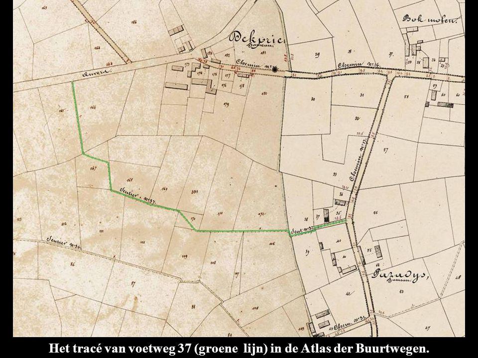 Het tracé van voetweg 37 (groene lijn) in de Atlas der Buurtwegen.