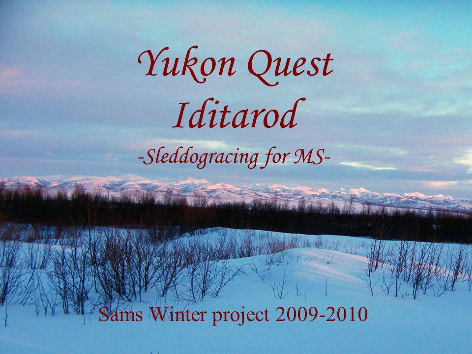 The Iditarod: 03-2010 •Van Anchorage naar Nome, dwars doorheen Alaska.