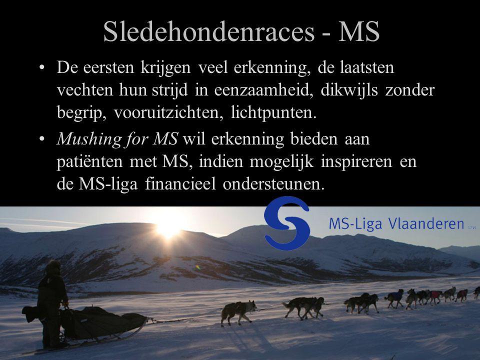 Sledehondenraces - MS •De eersten krijgen veel erkenning, de laatsten vechten hun strijd in eenzaamheid, dikwijls zonder begrip, vooruitzichten, lichtpunten.