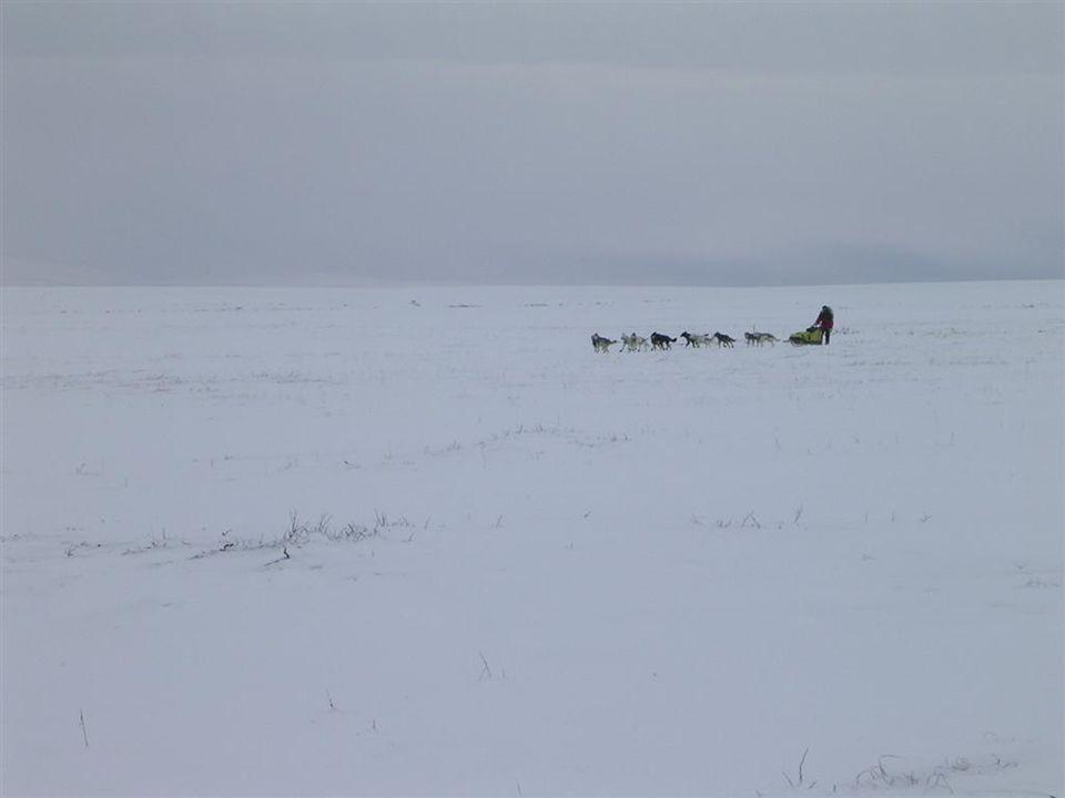The Yukon Quest: 02-2010 •Met 14 honden van Fairbanks naar Whitehorse, 1600 km, 9 checkpoints.