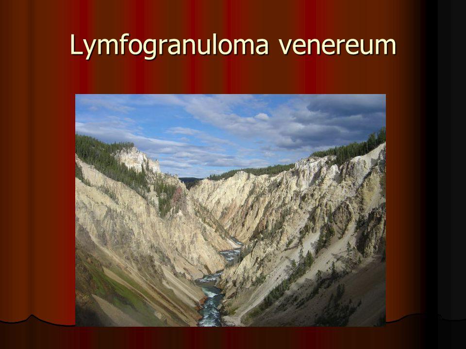 Lymfogranuloma venereum
