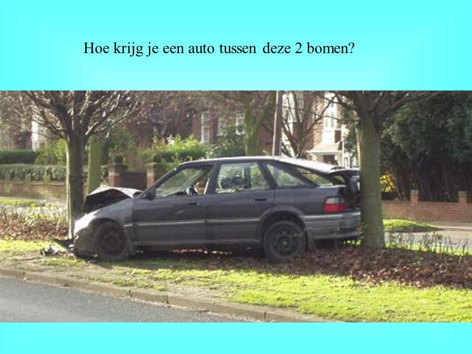 Hoe krijg je een auto tussen deze 2 bomen?