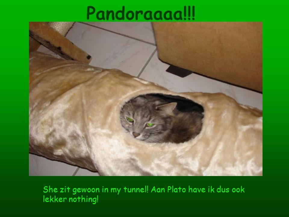 Pandoraaaa!!! She zit gewoon in my tunnel! Aan Plato have ik dus ook lekker nothing!