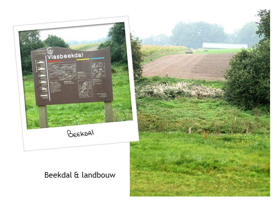 Beekdal & landbouw