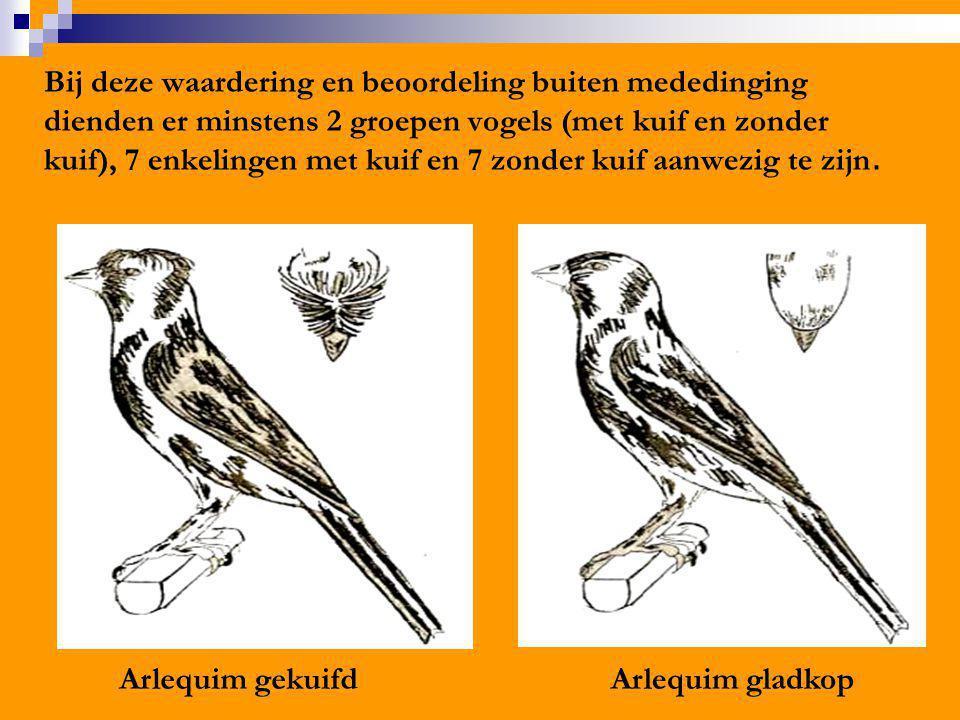 Bij deze waardering en beoordeling buiten mededinging dienden er minstens 2 groepen vogels (met kuif en zonder kuif), 7 enkelingen met kuif en 7 zonde