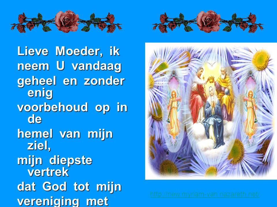 Lieve Moeder, ik neem U vandaag geheel en zonder enig voorbehoud op in de hemel van mijn ziel, mijn diepste vertrek dat God tot mijn vereniging met He