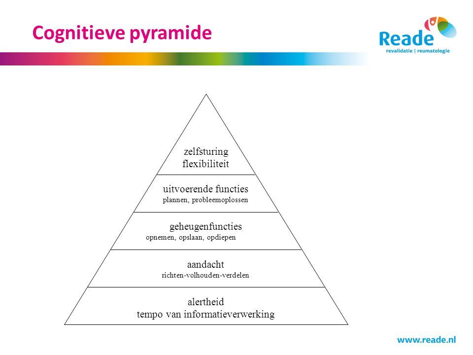 Cognitieve pyramide alertheid tempo van informatieverwerking aandacht richten-volhouden-verdelen geheugenfuncties opnemen, opslaan, opdiepen uitvoeren