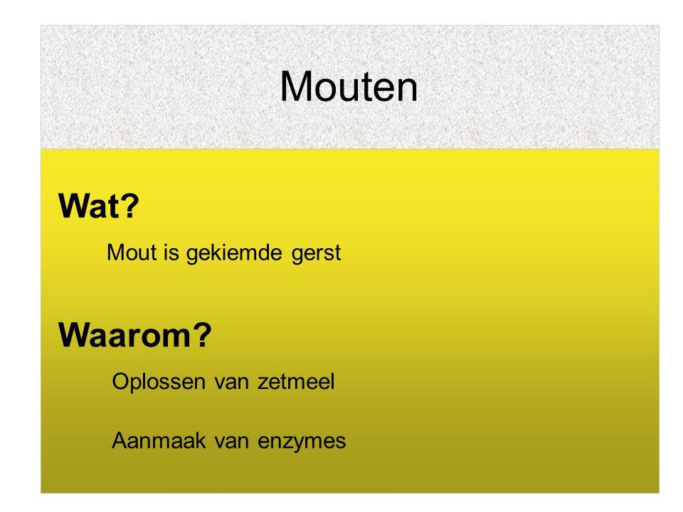Mouten Wat? Mout is gekiemde gerst Oplossen van zetmeel Aanmaak van enzymes Waarom?