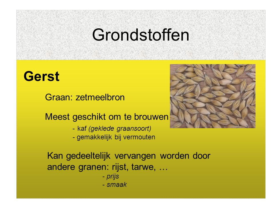 Grondstoffen Gerst Graan: zetmeelbron Meest geschikt om te brouwen - kaf (geklede graansoort) - gemakkelijk bij vermouten Kan gedeeltelijk vervangen w