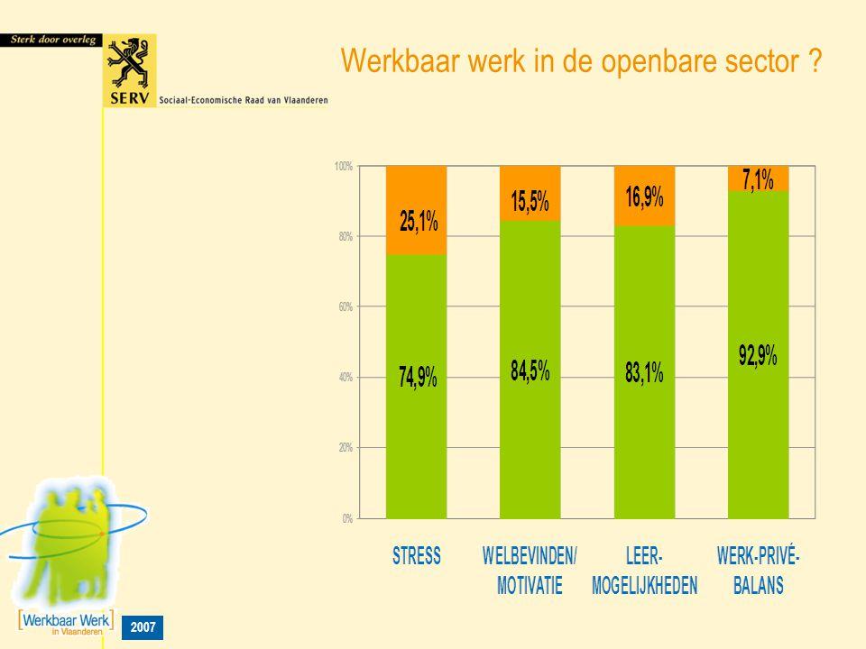 2007 Werkbaar werk in de openbare sector ?