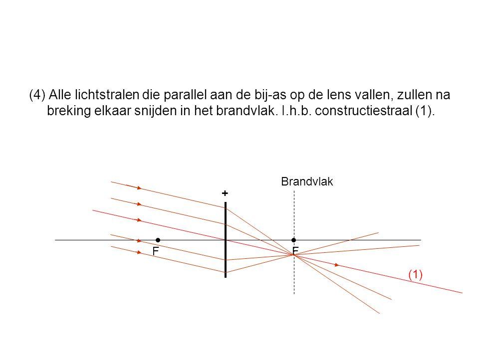 (4) Alle lichtstralen die parallel aan de bij-as op de lens vallen, zullen na breking elkaar snijden in het brandvlak.