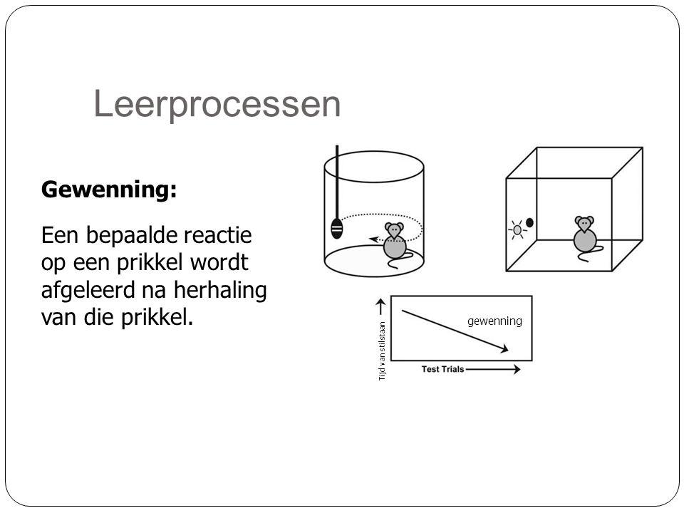 Leerprocessen Gewenning: Een bepaalde reactie op een prikkel wordt afgeleerd na herhaling van die prikkel. gewenning Tijd van stilstaan