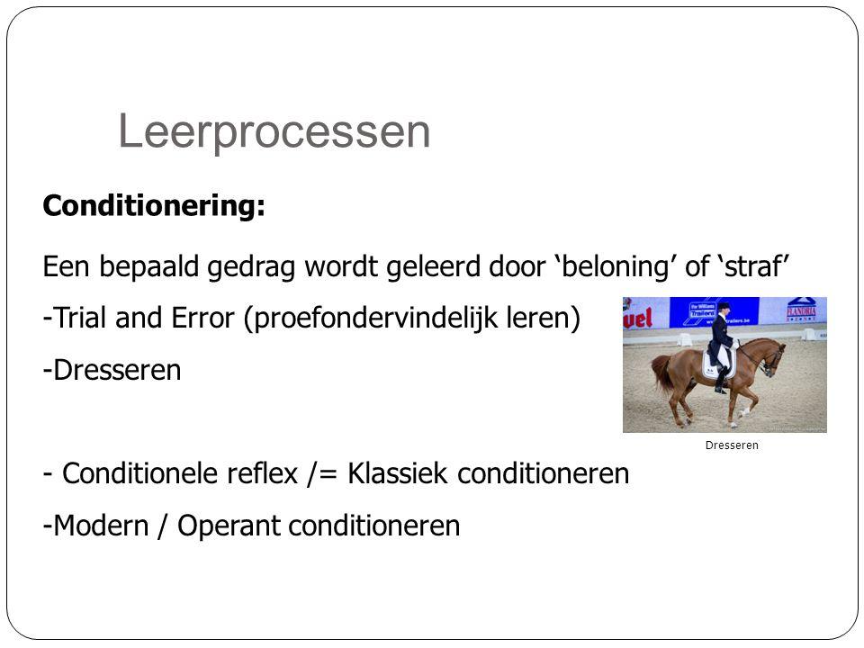 Leerprocessen Conditionering: Een bepaald gedrag wordt geleerd door 'beloning' of 'straf' -Trial and Error (proefondervindelijk leren) -Dresseren - Conditionele reflex /= Klassiek conditioneren -Modern / Operant conditioneren Dresseren