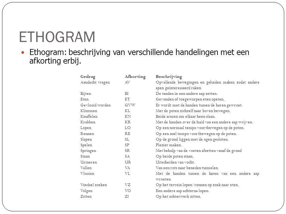 ETHOGRAM  Ethogram: beschrijving van verschillende handelingen met een afkorting erbij. GedragAfkortingBeschrijving Aandacht vragenAVOpvallende beweg