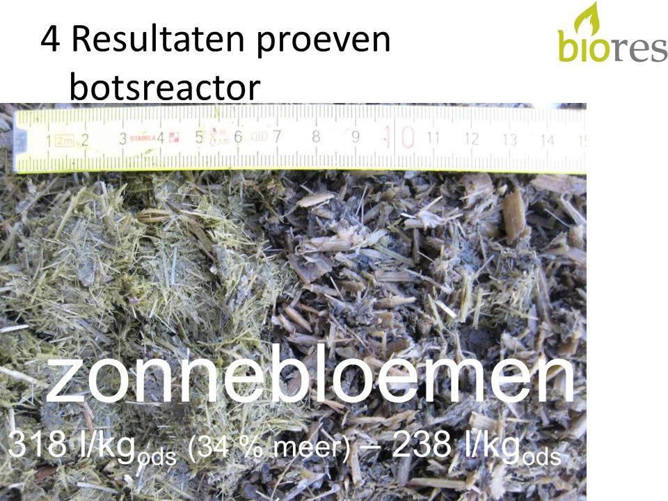 4 Resultaten proeven botsreactor zonnebloemen 318 l/kg ods (34 % meer) – 238 l/kg ods