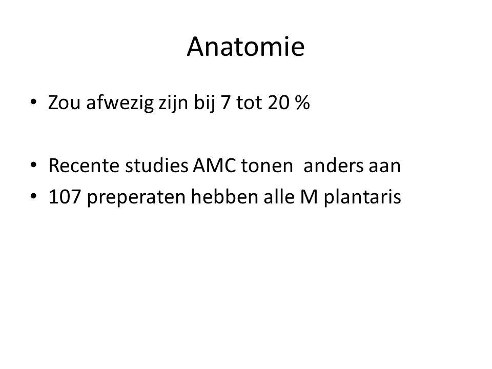 Anatomie • Zou afwezig zijn bij 7 tot 20 % • Recente studies AMC tonen anders aan • 107 preperaten hebben alle M plantaris