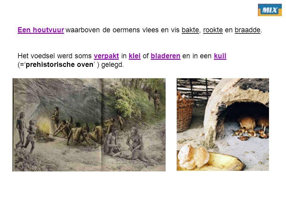 Een houtvuur waarboven de oermens vlees en vis bakte, rookte en braadde. Het voedsel werd soms verpakt in klei of bladeren en in een kuil (='prehistor