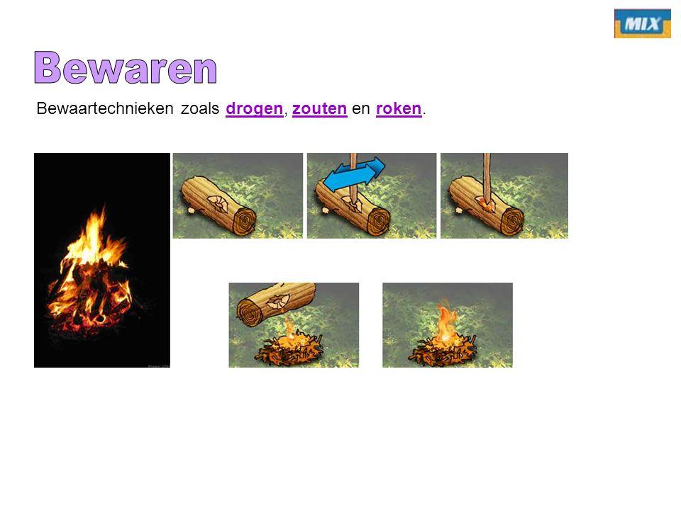 Galliërs => wild, vis, runderen en varkens Romeinen => Pap van granen => Zeer weinig vlees.